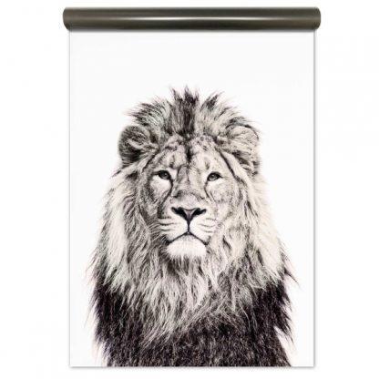 leijonatapetti sisustus