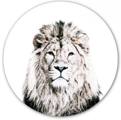 leijonatarra lastenhuoneen sisustus tarra
